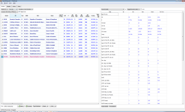 Main Window - With record details report of tagged records with statistics