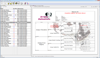 Breeders Assistant for Dogs