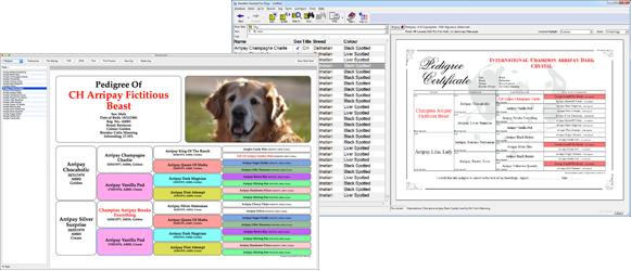 Tenset Pedigree Software and Animal Breeding Programs