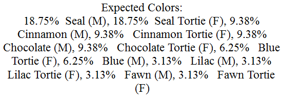 Color Prediction within Mating Certificate for Red x Seal Pt Siamese